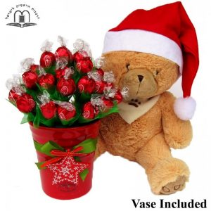 Christmas Teddy Wishes – Christmas Gift Israel